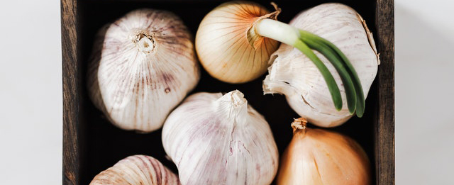 Healing French Onion Soup